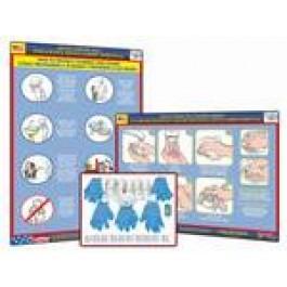 H1N1 Swine Flu Bundle
