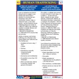 California Human Trafficking Poster