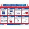 Bloodborne Pathogens Training Poster